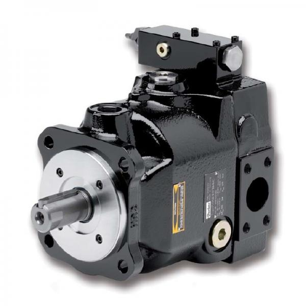 PAKER YB1-80 Piston Pump #2 image