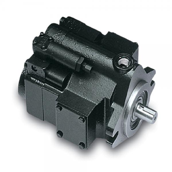 PAKER YB1-80 Piston Pump #1 image