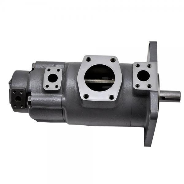 Yuken  PV2R12-25-41-L-RAA-40 Double Vane pump #2 image
